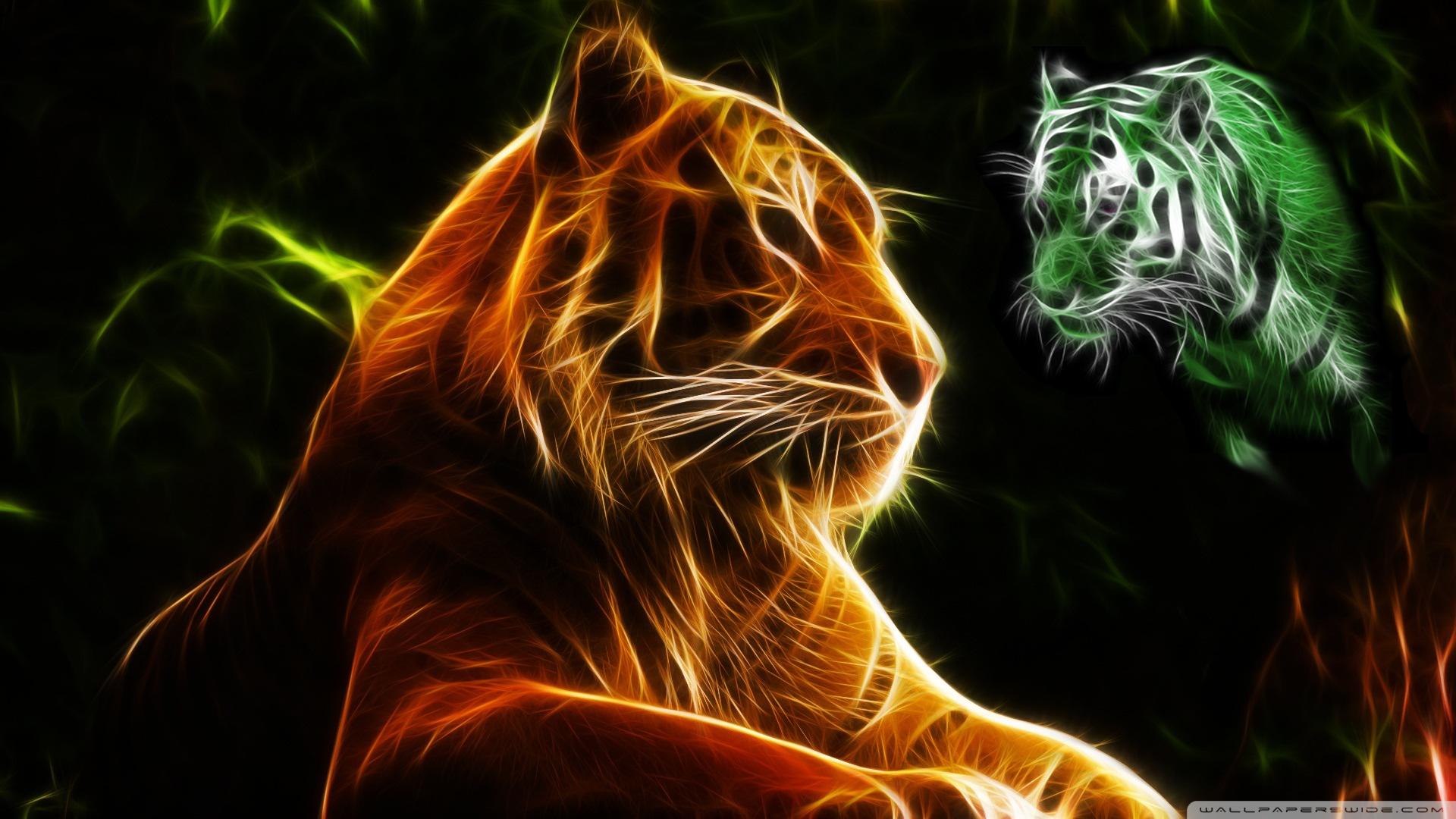 fire tiger   disciplinegym